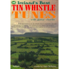 irelands best whistle tunes with guitar