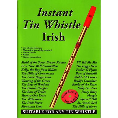 instant irish tin whistle book